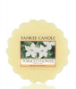 Yankee Candle Wax Melt Tobacco Flower Duftwachs 0,022 kg